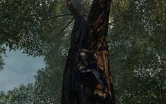 Assassin's Creed® III2014-6-2-23-11-20