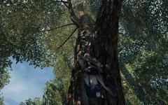 Assassin\'s Creed® III2014-6-2-23-3-53