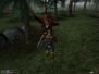 The Elder Scrolls: Morrowind - Bloodmoon