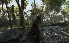 Assassin's Creed® IV Black Flag™ Deluxe Edition2014-6-27-3-39-20