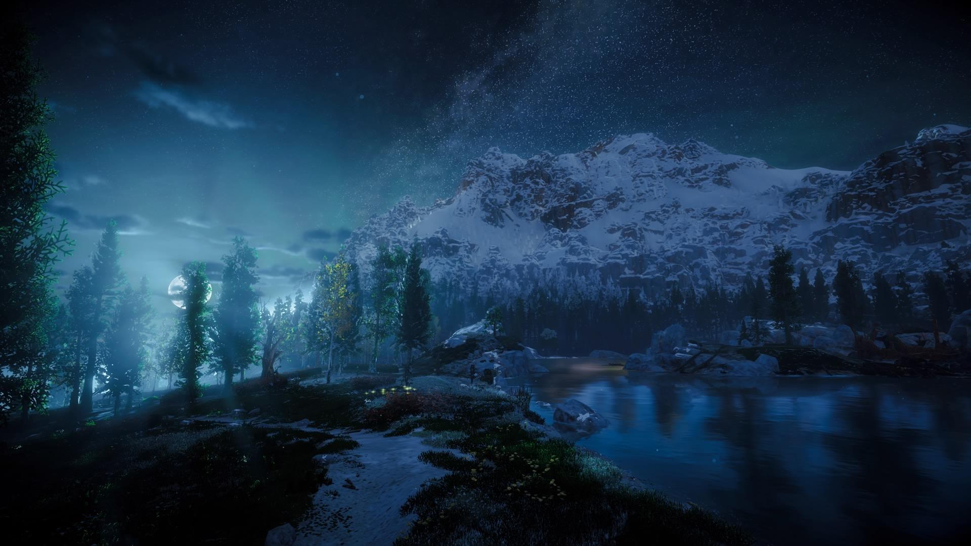 Die Wildnis bei Nacht