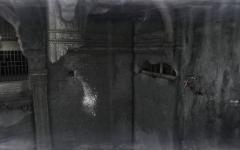 2011-07-28_00014